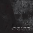 Die Reise von Necrotic Woods soll im Jahr 2004 begonnen haben, so verrät es der Pressetext uns das und die Bandgründer Nachzehrer und Thorn wollten eine kalte und düstere Black […]
